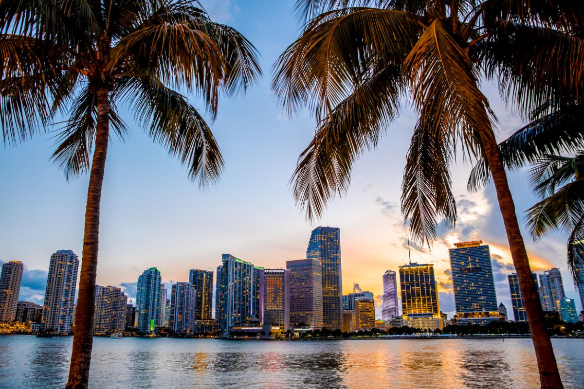 Miami digital marketing agency
